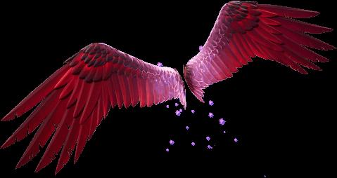 Eagle's Form