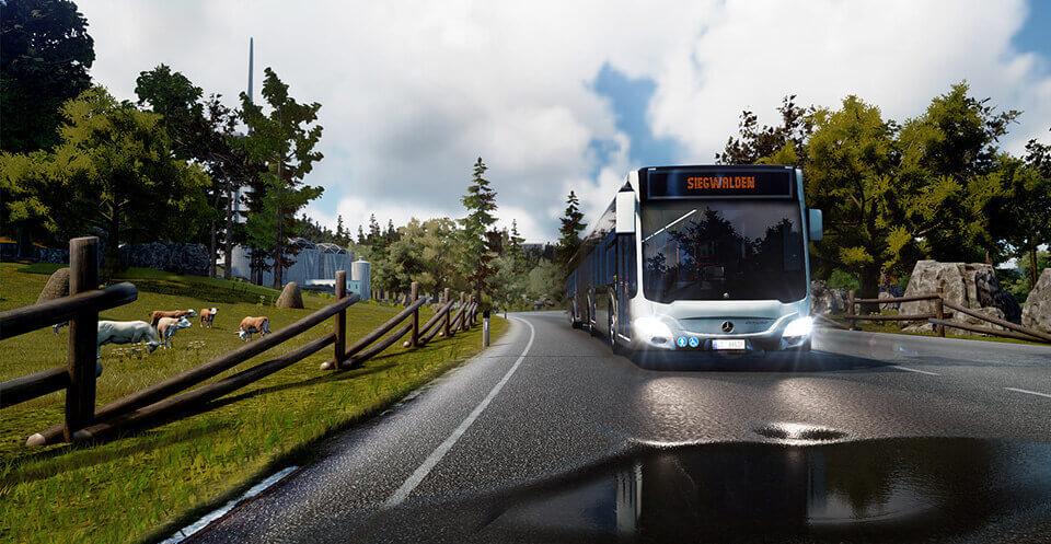 Bus Sim Gallery 3