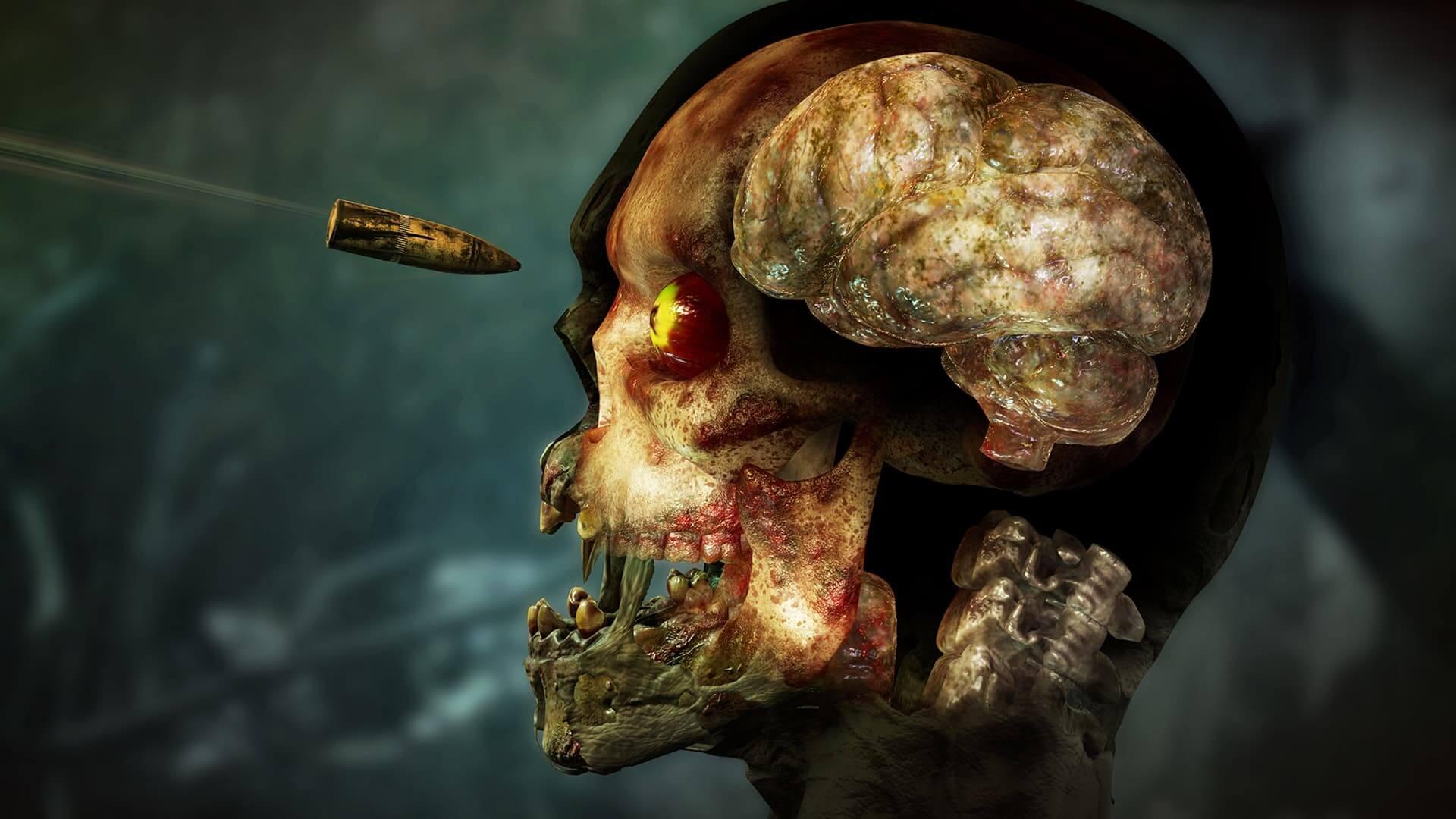 僵尸部队4:死亡战争/Zombie Army 4: Dead War/单机.局域网联机插图1