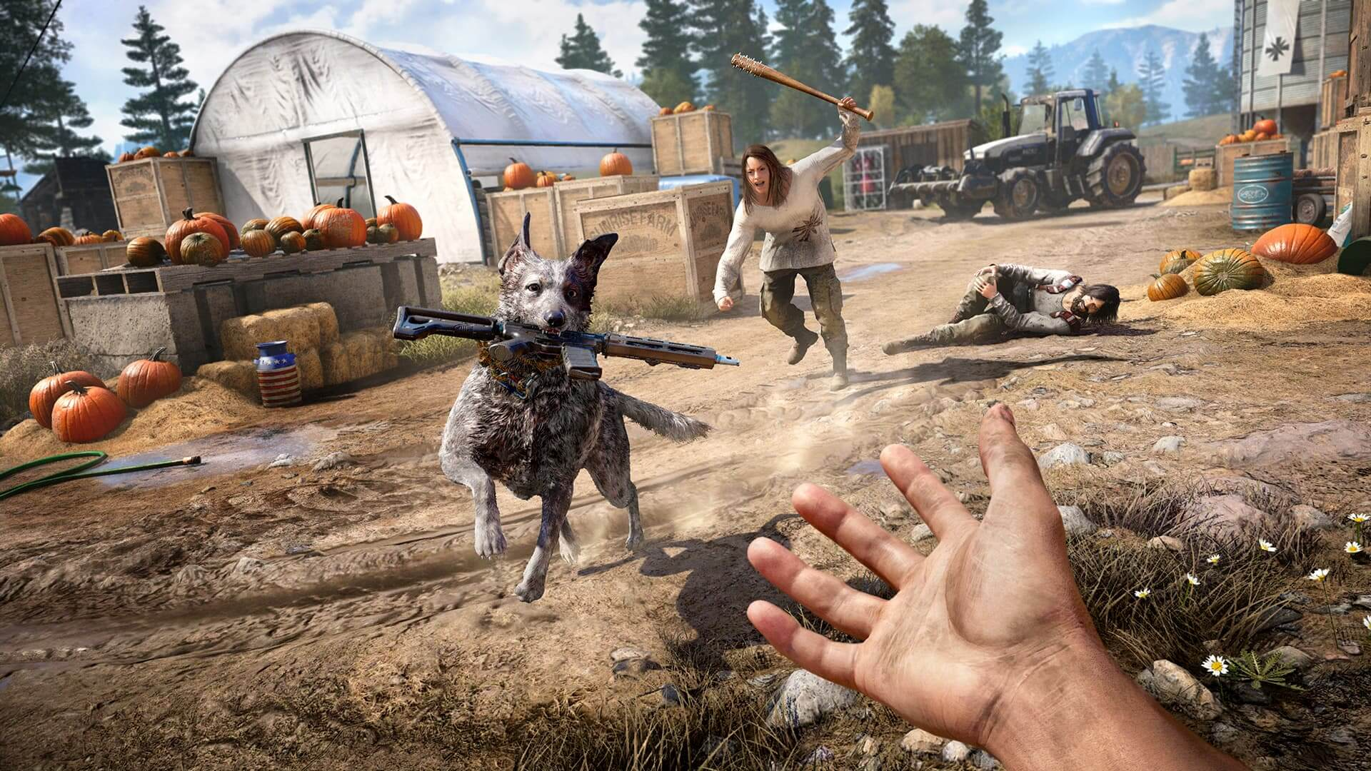 Far Cry 5 Missions