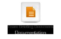 Team Briefing Document