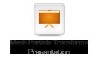 Mesh Particle Transforms