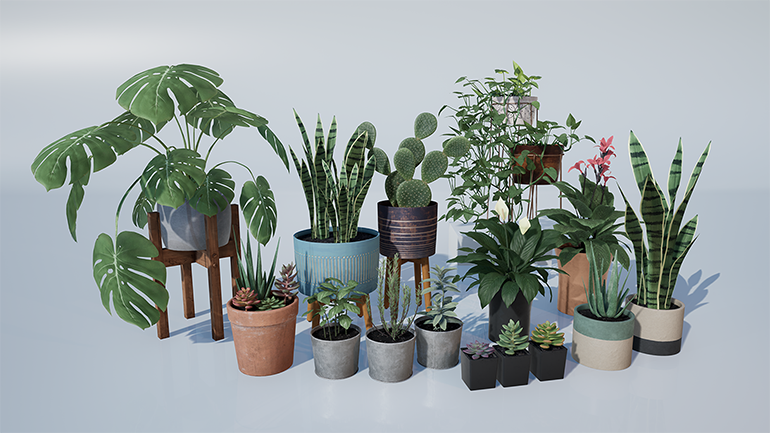 2_Houseplants_770.png