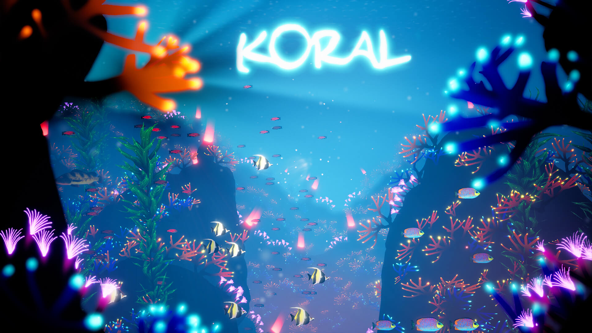 Developer-Interview_Koral_03.jpg