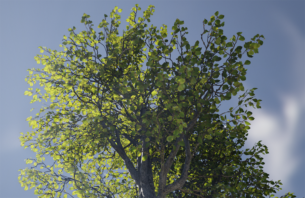 Realistic Foliage Lighting