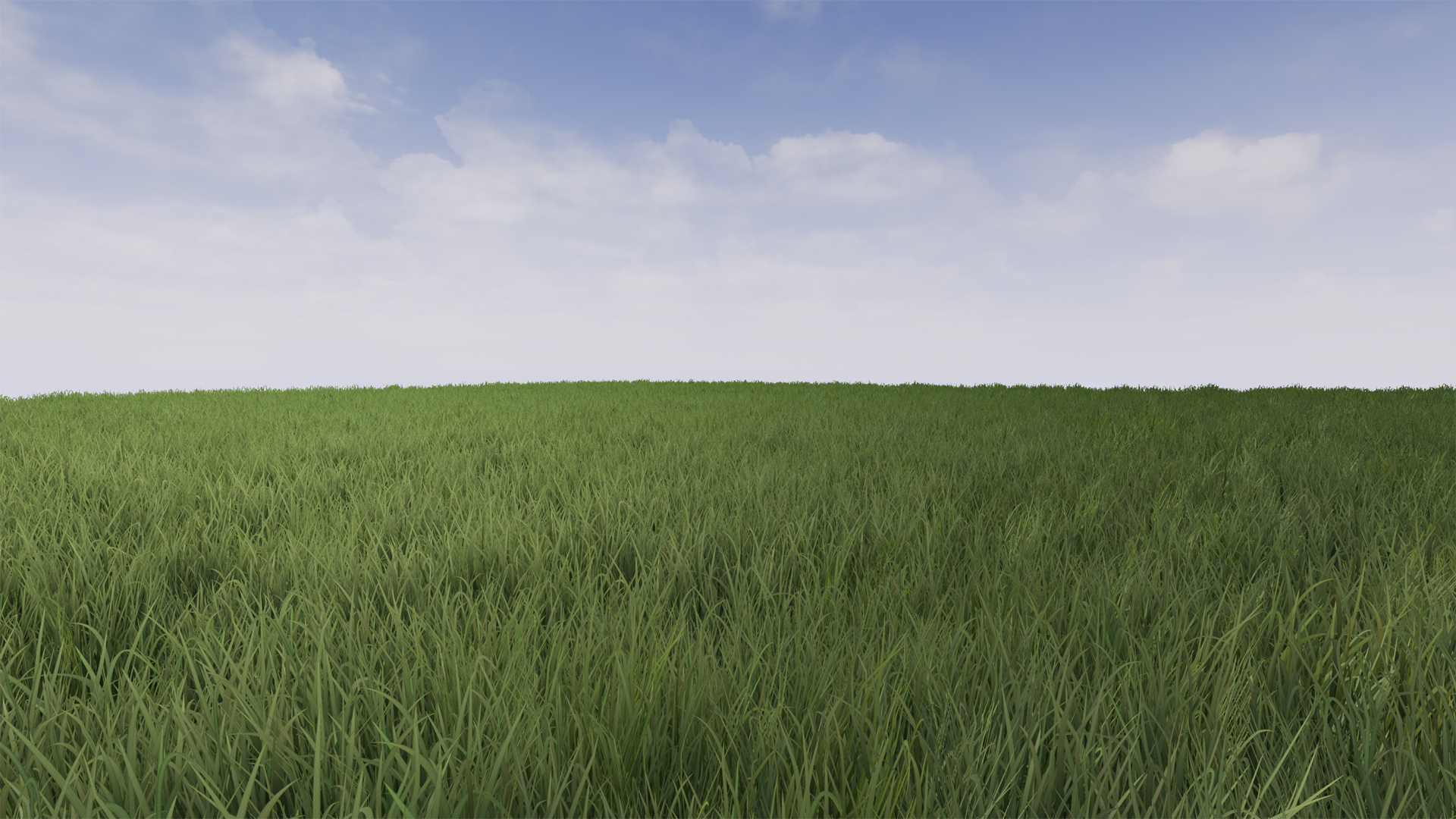Realistic Grass 1 from James Yates