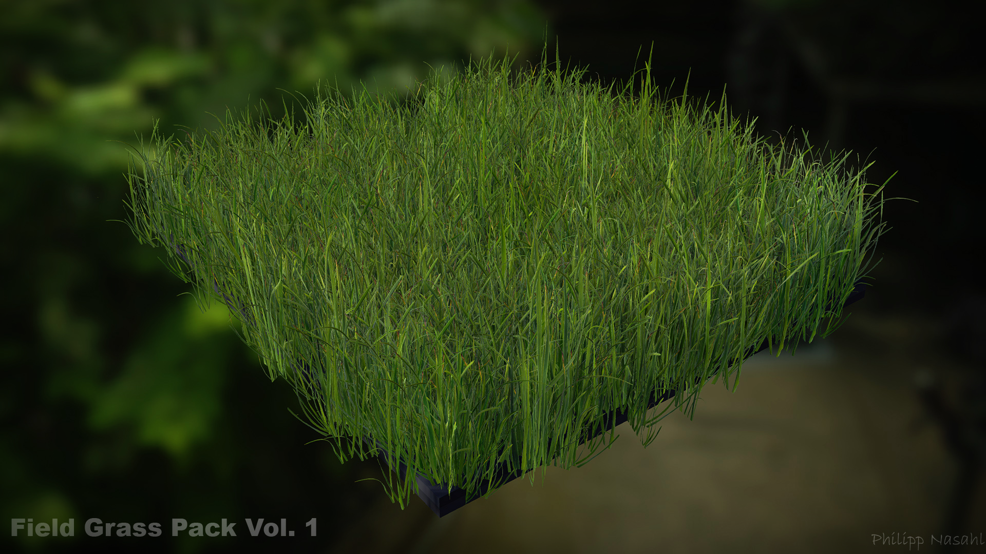 Field Grass Package Vol. 1 by Phillipp Nasahl