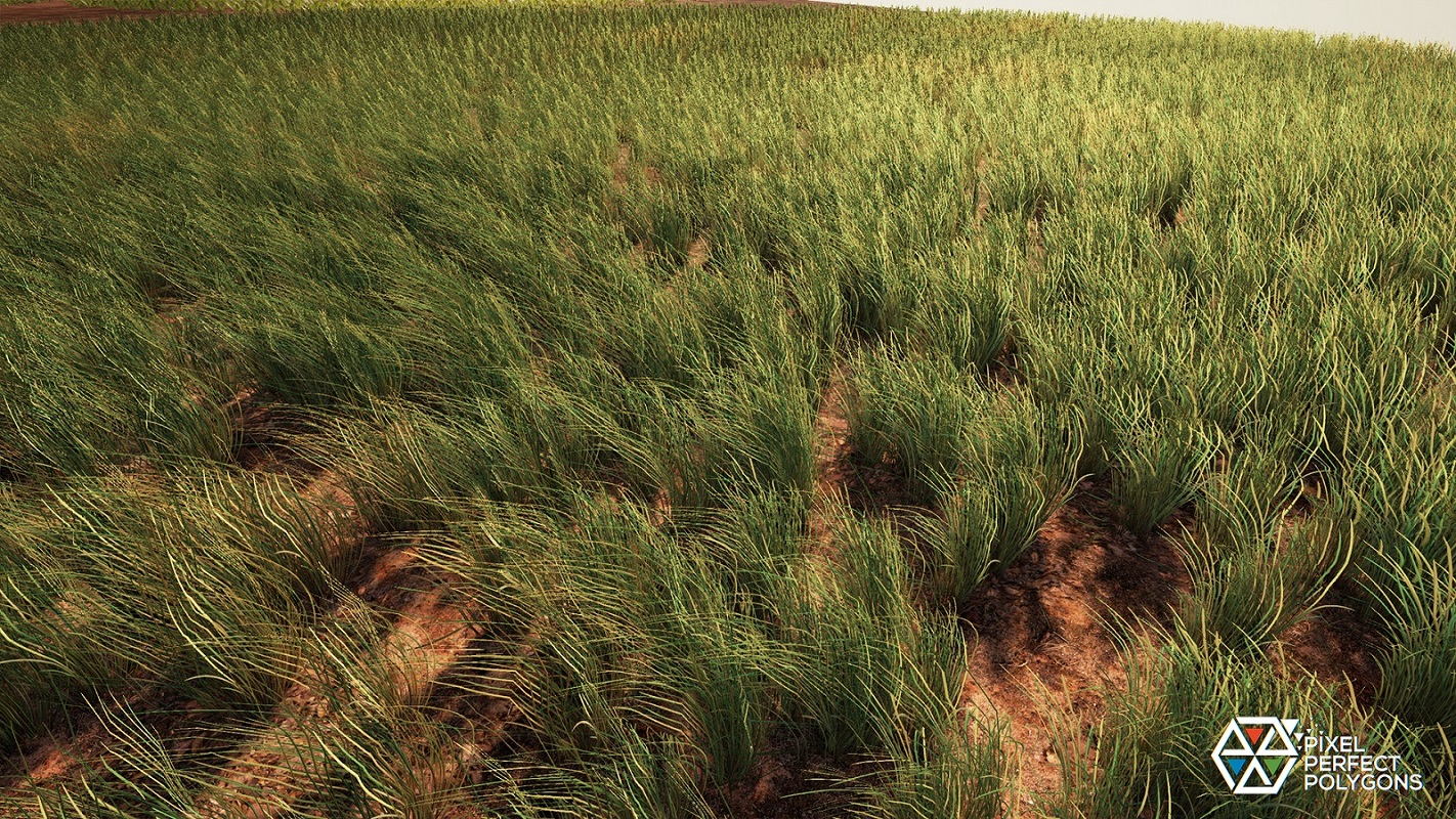 Infinite Bushes and Shrubs by Pixel Perfect Polygons