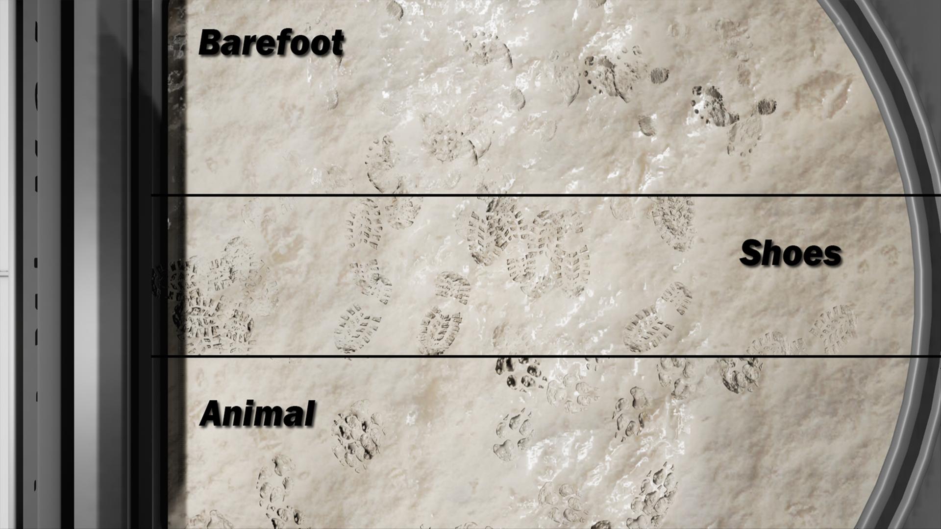 Footprint System (Jonas Richartz)