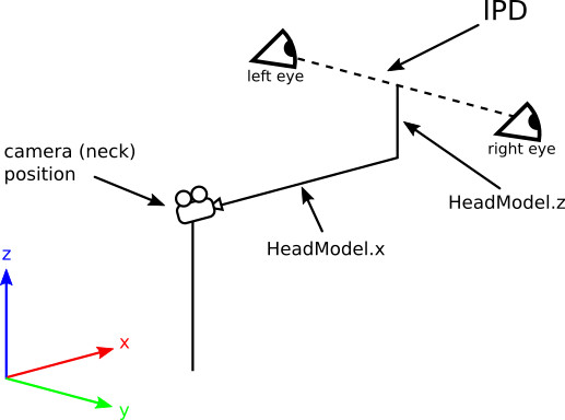 Neck model