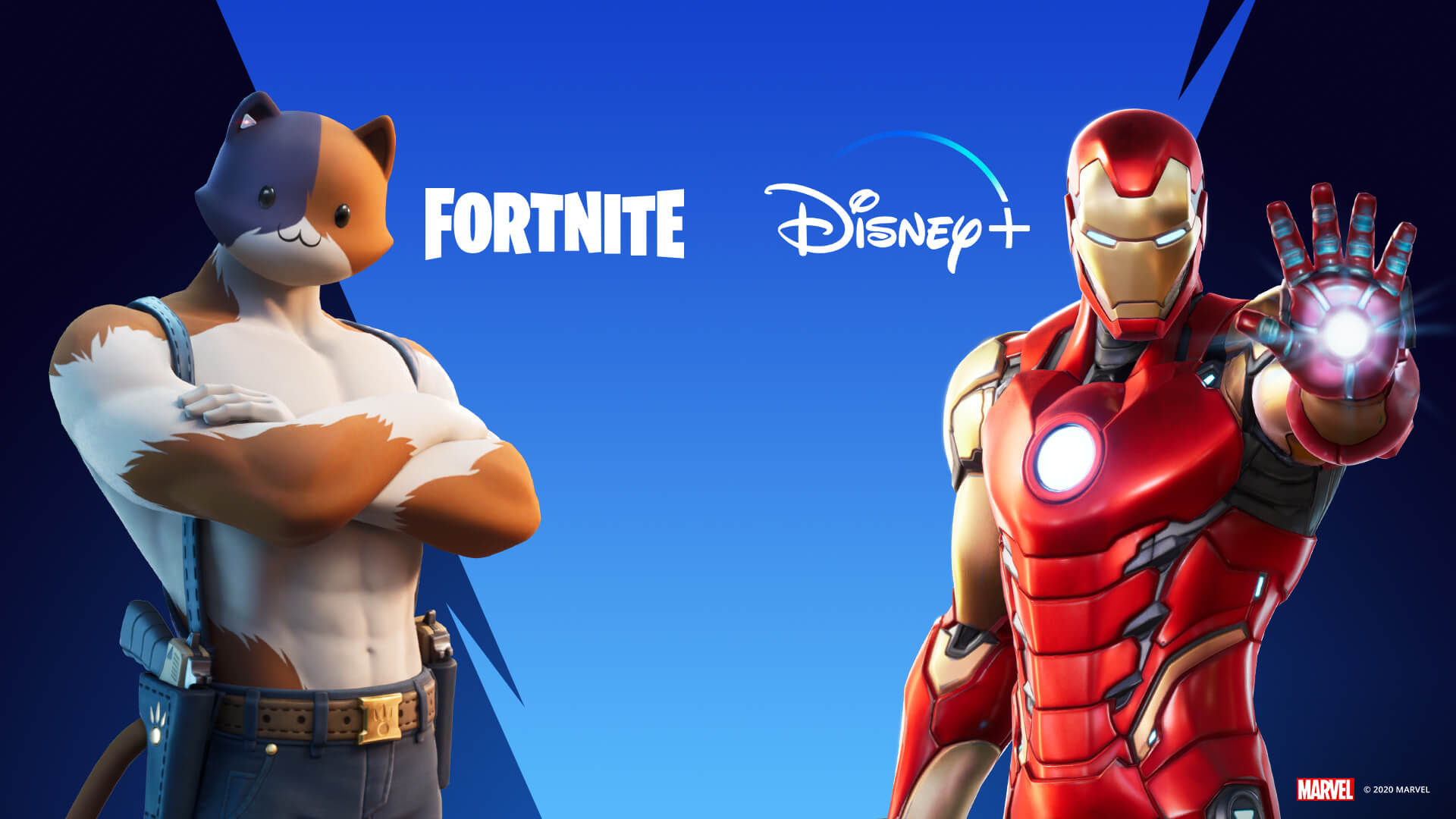 Fortnite Disney Plus Promotion