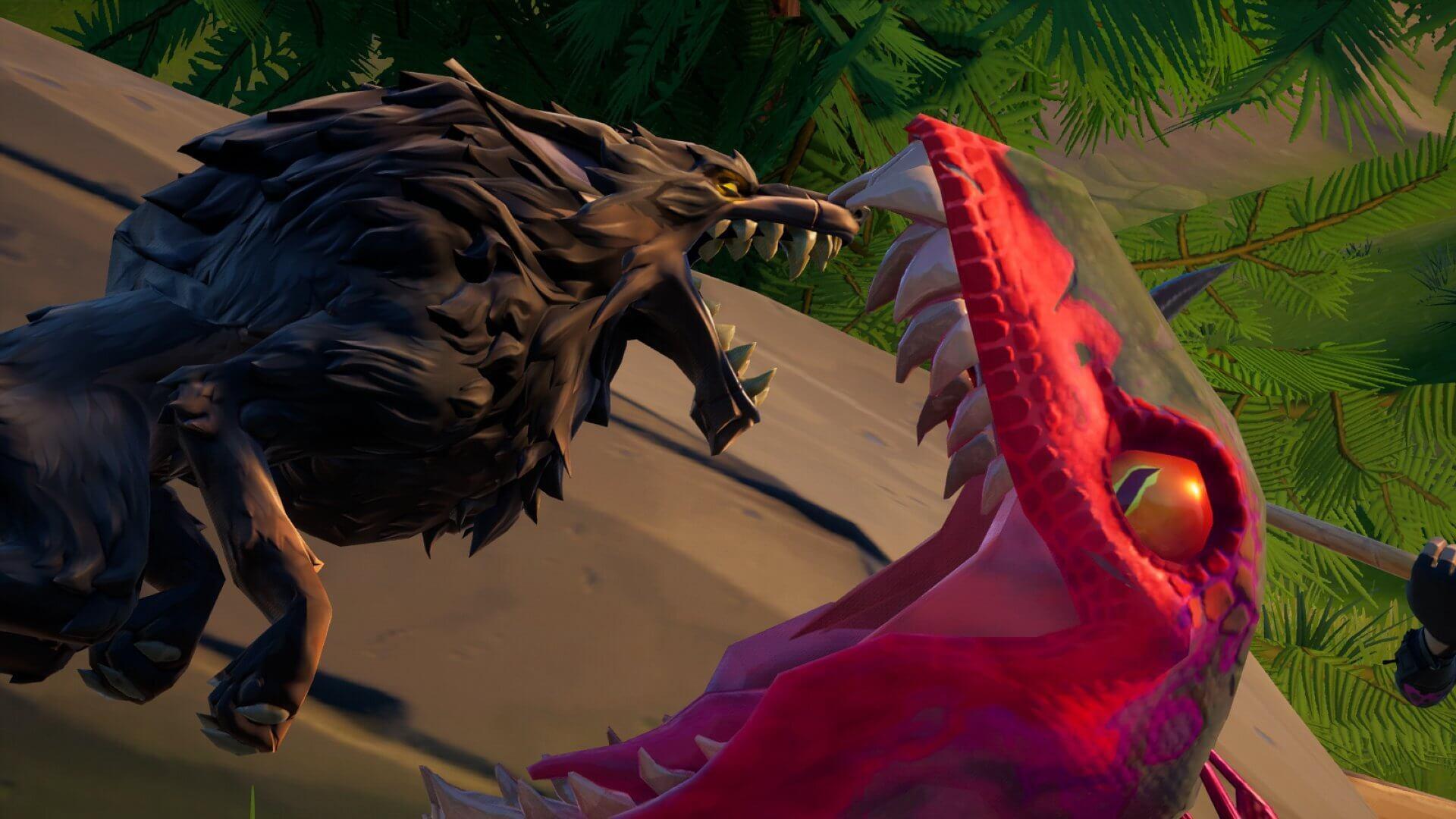 Tiltedzz Raptor Fortography